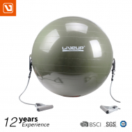 Gym ball With Expander from LiveUp - Grey