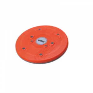 Magnetic Disc Mount